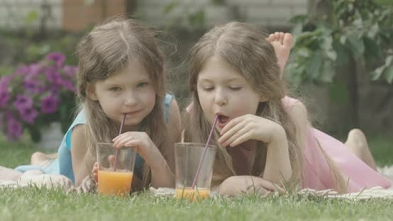 Thumbnail for Portrait of Cute Twin Sisters Posing on Backyard on Sunny Summer Day. Brunette Curly-haired Girls