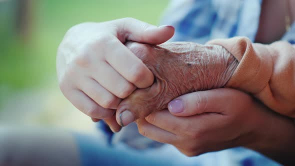 Cover Image for A Young Woman Holds an Elderly Lady's Hand. Granddaughter Holds the Hand of His Baushka in His Hands