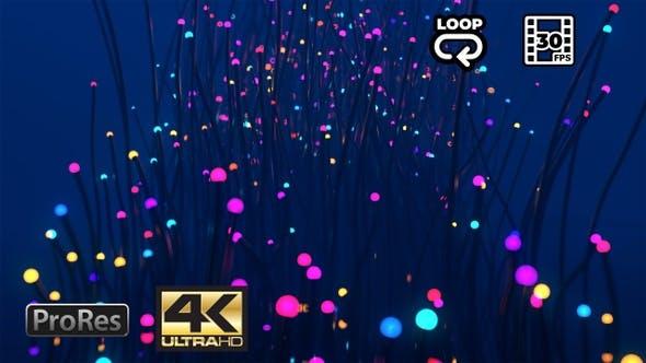 Thumbnail for Glowing Plants - Fantasy VJ Loop - 4K