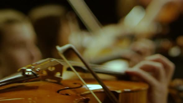 Thumbnail for Playing the Violin Close-up