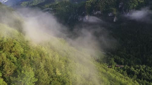Misty Mountains above the forest