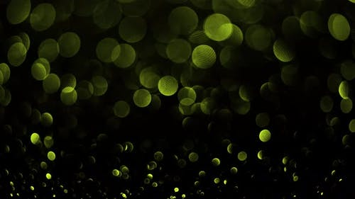 Yellow Bokeh Particles. Background Abstract