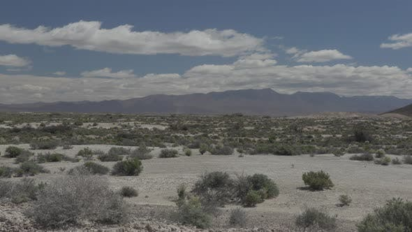 Thumbnail for Desert in Spring in Ash Meadows National Wildlife Refuge Nevada
