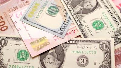 Hong Kong dollar and US dollar