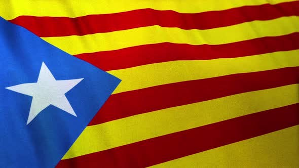 Flag of the Estelana Blava and Catalonia Independency Banner