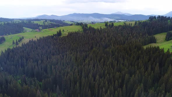 Thumbnail for Smoke Over Forest in Mountains