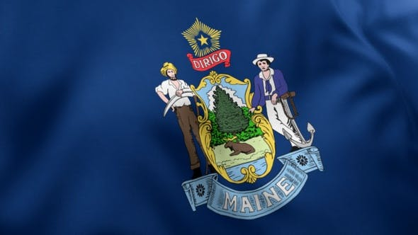 Thumbnail for Maine State Flag