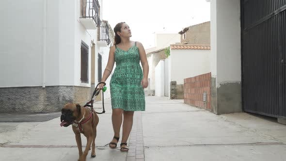Thumbnail for happy woman walking with boxer dog in the street