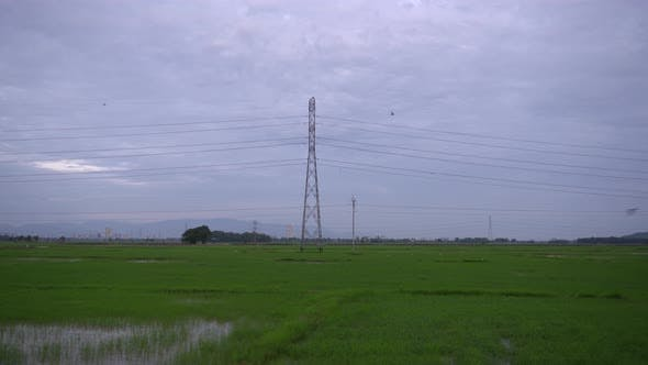 Landscape electric pole in morning