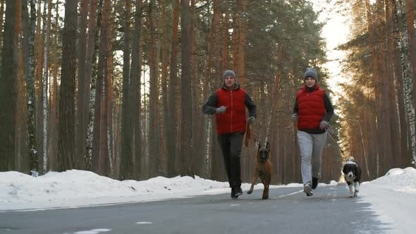 Thumbnail for Man and Woman Jogging with Two Dogs