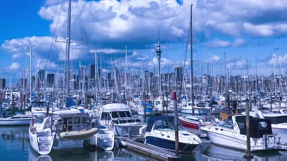 Thumbnail for Auckland harbor New Zealand