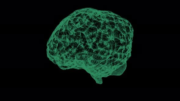 Thumbnail for Head Up Display of Advance Human Biomedical Diagnostic Brain 02