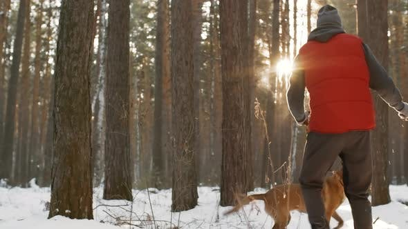 Thumbnail for Man Playing with Dog in Winter Forest
