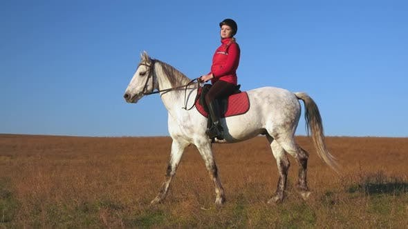 Thumbnail for Walk on the Lawn Horse Riding Horsewoman