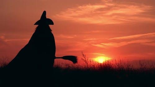 die Zauberin hebt den Besen bei Sonnenaufgang auf