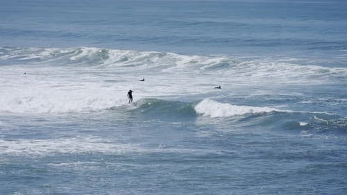 Surfers on the ocean