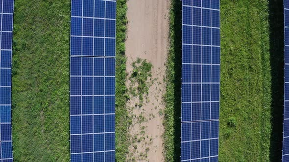 Cover Image for Top View of Solar Panels at Power Station