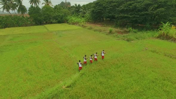 Thumbnail for Paddy Field Workers Walking