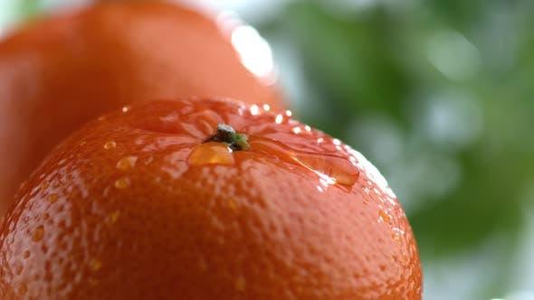 Water drips on orange in slow motion; shot on Phantom Flex 4K at 1000 fps