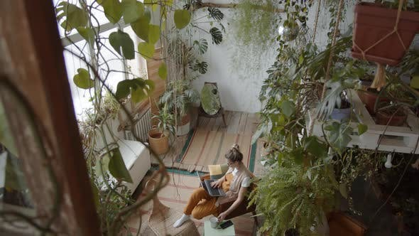 Thumbnail for High Angle of Woman Working on Laptop in Large Room with Plants