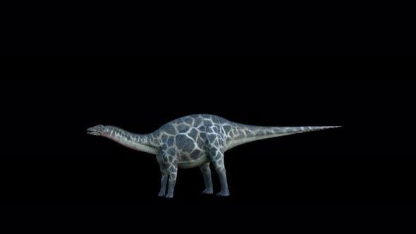Thumbnail for 4K Dicraeosaurus Dinosaur