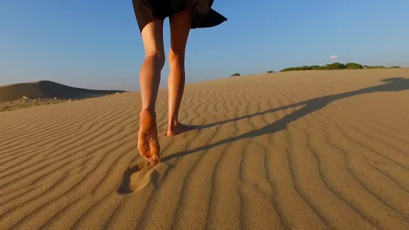 Thumbnail for Exploring The Desert