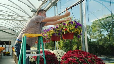 The Man Works in the Nursery of Flowers