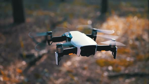 Thumbnail for Drone with a Camera Hovers in the Air Above the Ground in the Forest. Slow Motion