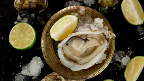 The Oysters in the Plate with Pieces of Lime Rotate.