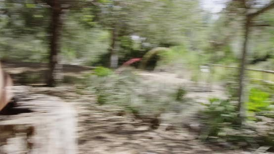 Thumbnail for Healthy Asian woman running off trail at the park