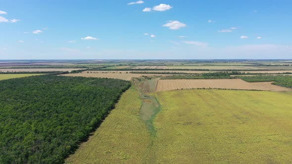Thumbnail for Agricultural fields aerial view.