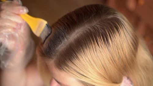 Hairdresser Applying Tint with a Small Applicator Brush, To the Roots of a Clients Hair at the Back