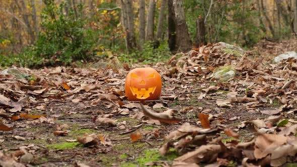 Thumbnail for Halloween Spooky Pumpkin in Forest