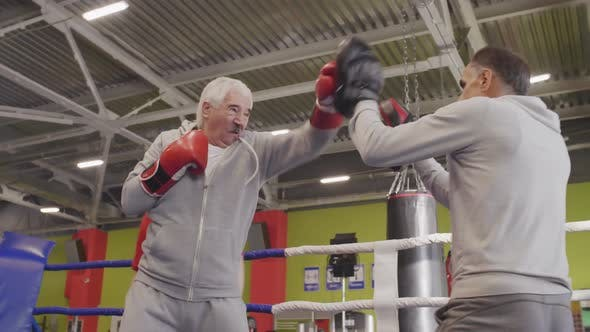 Senior Kickboxers on Training