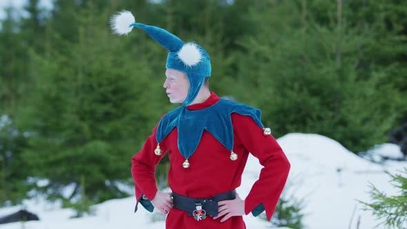 Thumbnail for A Christmas elf