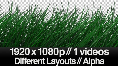 Realistic Grass Blowing in Wind - Calm - ALPHA