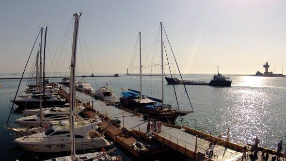 Thumbnail for Life in Marina