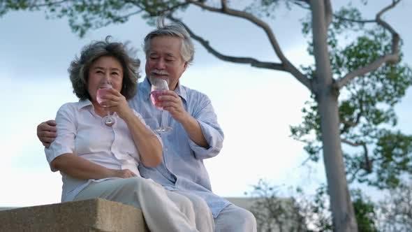 Senior adult man and woman anniversary summer