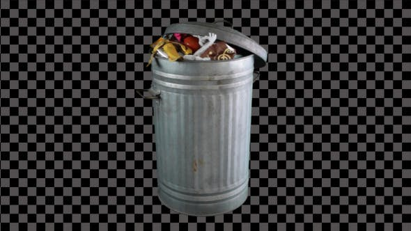 Thumbnail for Bin