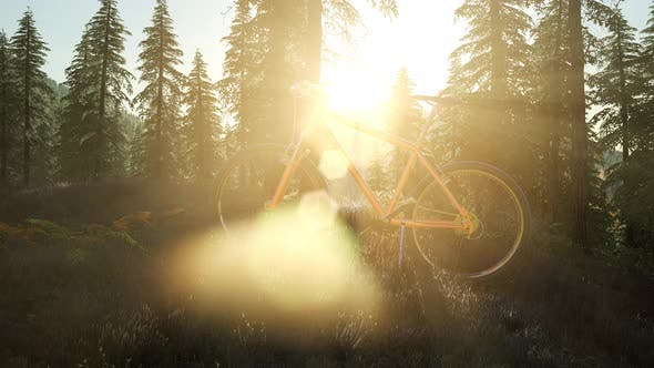 Bicycle in Mountain Forest