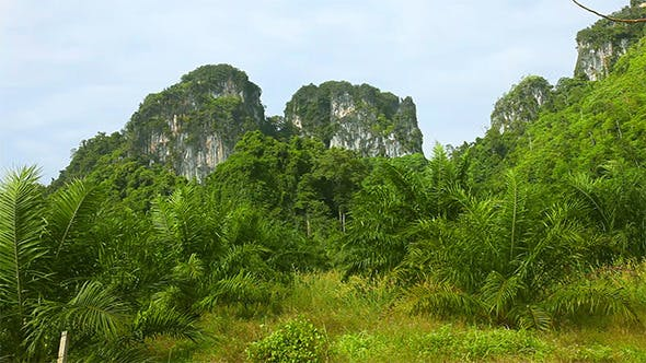 Cover Image for Thailand Landscape