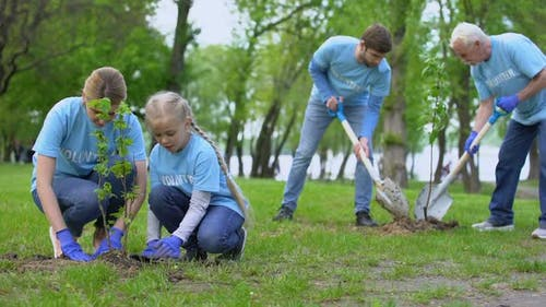 Eco Activists Planting Trees in Park