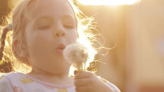 Thumbnail for Charming Little Girl Blowing Dandelion While Walking