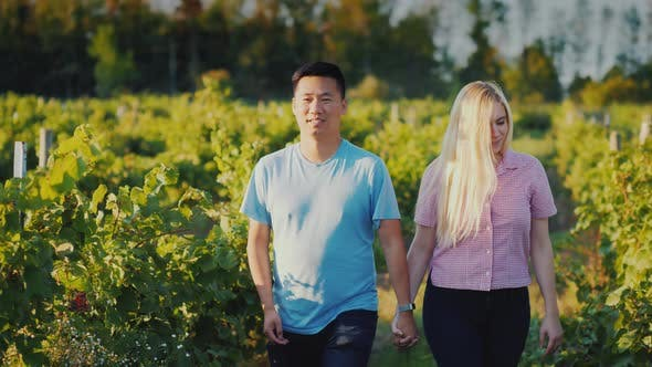 Thumbnail for Young Couple Walking in the Vineyard, Traveling To Places of Wine Production