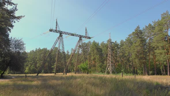 High Voltage Lines In Forest