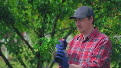 Gardener with Root in the Garden