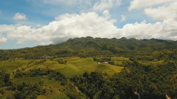 Thumbnail for Farmland in Province Philippines
