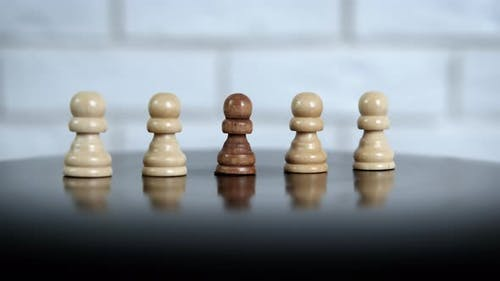 The Concept of Racial Inequality