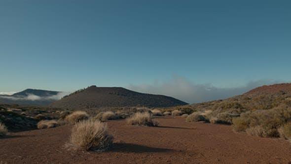 Highland Nature and Bright Sunshine. Tenerife Scene