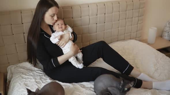 Junge Mutter sitzt mit Baby Girl und zwei Sphynx Katzen